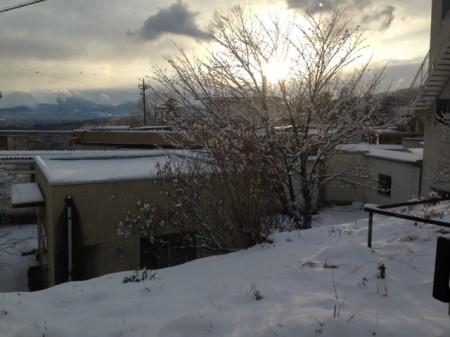 写真 yuki 2